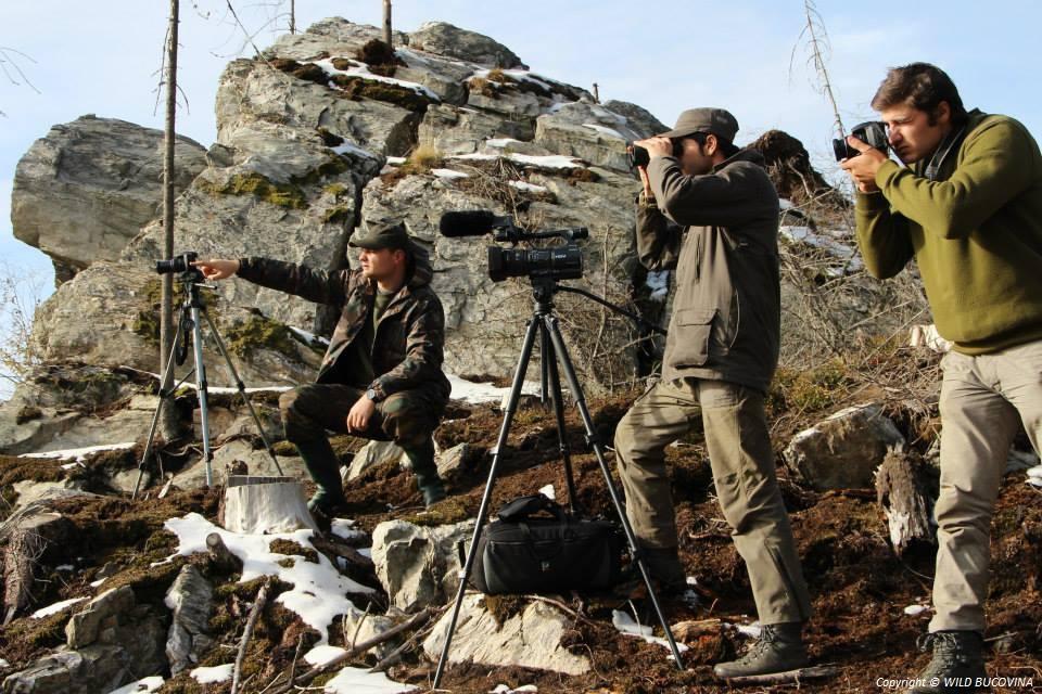 Wild Bucovina Team